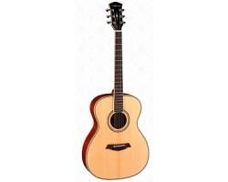 Гитара PARKWOOD P620 акустическая, с футляром