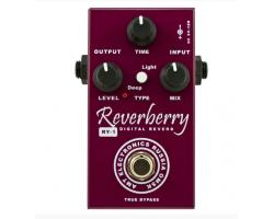 Педаль AMT Electronics RY1 Reverberry