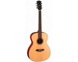 Гитара PARKWOOD S22GT акустическая, с чехлом