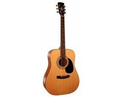 Гитара PARKWOOD W81OP акустическая