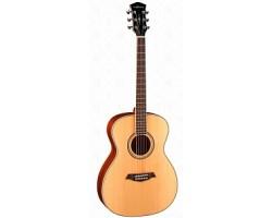 Гитара PARKWOOD S62 акустическая, с чехлом