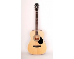 Гитара PARKWOOD PF51E OP электроакустическая