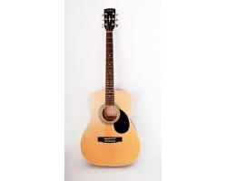 Гитара PARKWOOD PF51OP акустическая с чехлом