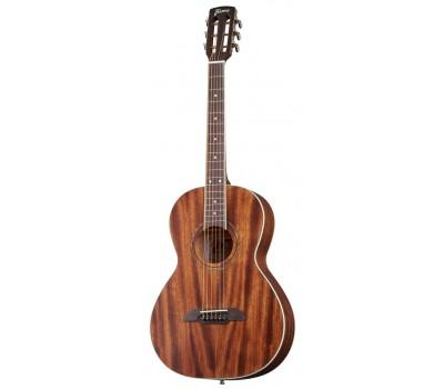 Гитара FRAMUS FP14M NS акустическая