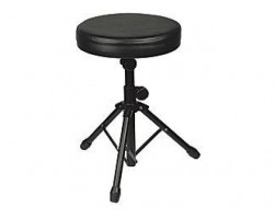 Стул MUSIC STAND DT310