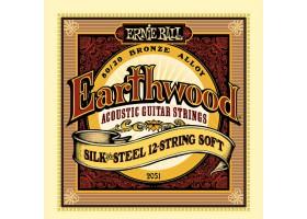 Струны ERNIE BALL 2051 бронза Silk&Steel для 12-струнной акустической гитары